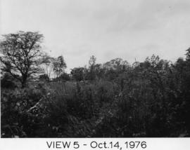 Photograph of Dalplex Construction : View 5