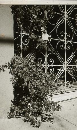 Photograph of a gated entrance to an unidentifed residence