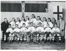 Photograph of the district three hockey team