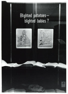 Photograph of display case exhibit on Blighted Potatoes and Blighted Babies