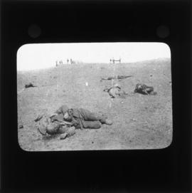 Photograph of fallen soldiers