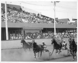 Photograph of Horse racing in Charlottetown Prince Edward Island