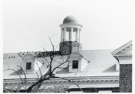 Photograph of the turret on the Science Building