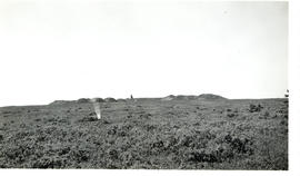 Photograph of the ridge at Fort Beausejour