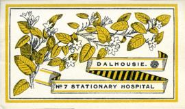 Brochure on the history of the Dalhousie University No. 7 Stationary Hospital