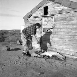 Photograph of Alicie Berthé with a dead seal at her family's store house near the Koksoak River