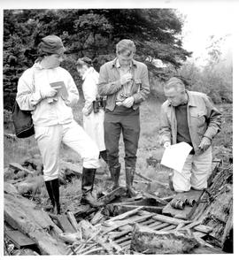 Photograph of four bird watchers looking at a pile of wooden debris