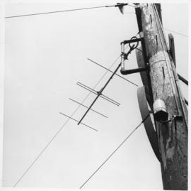 Photograph of an Island Telephone Company telephone pole