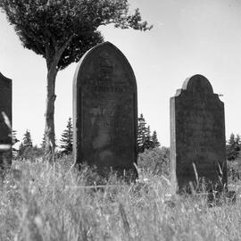 Photograph of the tombstones of Peter, Joanna, and John Henry McNab