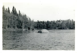 "Photograph of J.A. Parker and Dunlap fishing from a canoe downstream from the ""Low Bridge"" to Pol..."