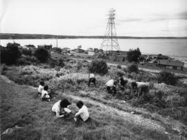 Photograph of children picking blueberries near Africville