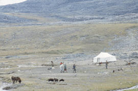 Photograph of a tent, people, and dogs near Cape Dorset, Northwest Territories