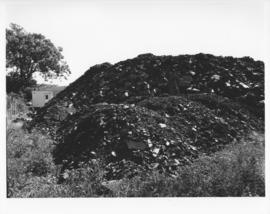 Photograph of a pile of dirt at the Dalplex construction site