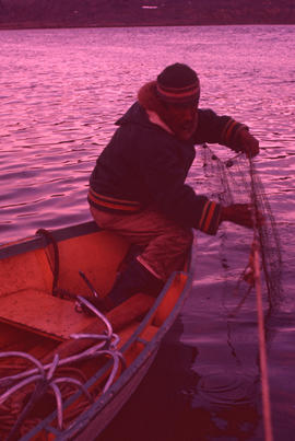 Photograph of a man setting nets at Ikkudliayuk