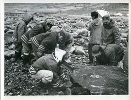 Photograph of a team of men removing a boulder from a path in Wakeham Bay, Quebec