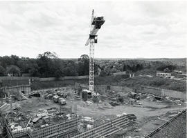 Dalplex Construction : View 8