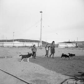 Photograph of three girls walking with four dogs in northern Quebec