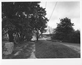 Photograph of a driveway near Dalplex during construction