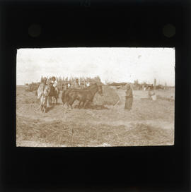 Photograph of a group of people in a field with horses
