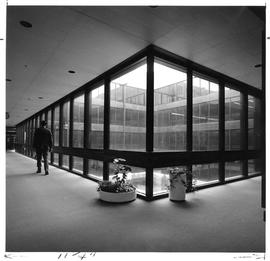 Photograph of a hallway with windows in the Killam Memorial Library