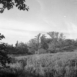 Photograph of a small house on McNab's Island