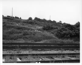 Photograph of train tracks on the former location of Africville