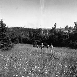 Photograph of five people walking through a field on McNab's Island