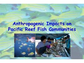 Antropogenic impacts on pacific reef fish communities : [PowerPoint presenation]