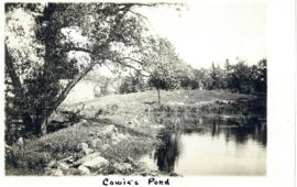 Photograph of Cowie Pond printed on a postcard