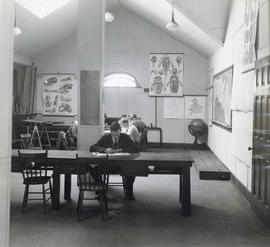 Photograph of students studying in the Science Building