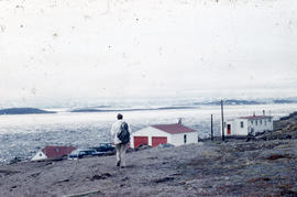 Photograph of Barbara Hinds walking toward houses in Frobisher Bay, Northwest Territories