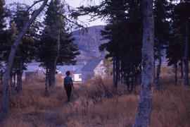 Photograph of Pauline White walking through the trees in Nain, Newfoundland and Labrador