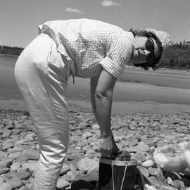 Photograph of an unidentified woman bending over a bag on a rocky shore
