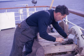 Photograph of a man tending to a crate of chickens on a boat deck in Newfoundland and Labrador