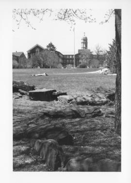 Photograph of the lawn in front of the Henry Hicks Arts & Administration Building