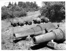 Photograph of cannons on McNab's Island