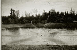 Photograph of a small pond with a water sprinkler