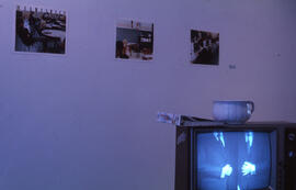 Photograph of Satire as Discontent exhibition