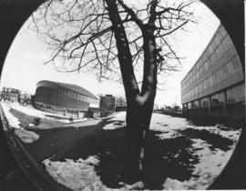 Fish-eye photograph of the F. H. Sexton Memorial Gymnasium and nearby buildings