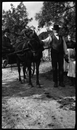 Man holding a horse attached to a cart