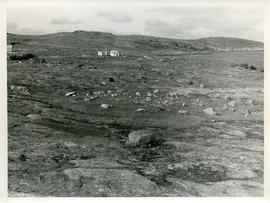 Photograph of the tundra in northern Quebec