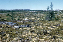 Photograph of the tundra at old Fort Chimo, Quebec