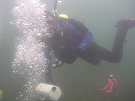 Photograph of diver underwater