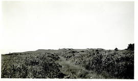 Photograph of Fort Beausejour from an old trench leading to the outworks