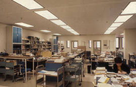 Photograph of back offices in the Kellogg Library