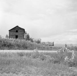 Photograph of an abandoned wooden shed in the Yukon