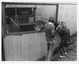 Photograph of three unidentified people looking in the window of a concrete building