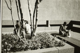 Photograph of three people in a courtyard in San Francisco, California