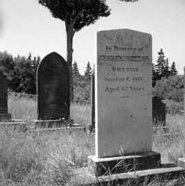 Photograph of the tombstone of Peter McNab
