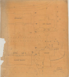 Plan of shrubbery on Studley campus